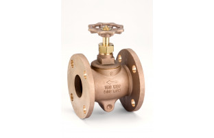 Model 123NG Flanged Globe Valve